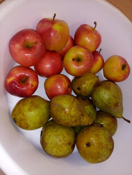 Kompot owocowy.